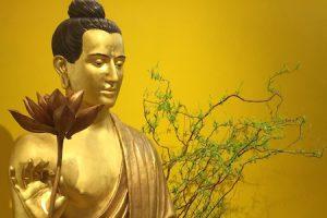 Lotus Hall Buddha