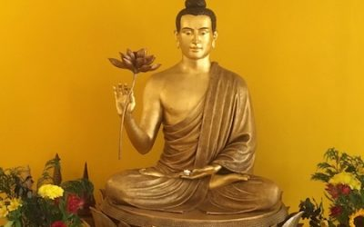 Meditation Classes and Groups: Centre Re-opening