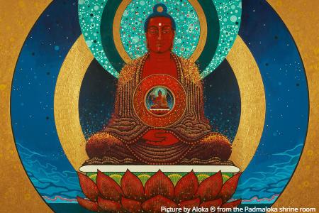 Amitabha from the Padmaloka shrine room
