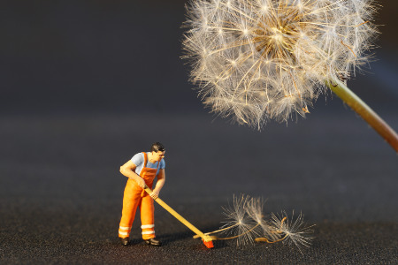 Toy man sweeping up a dandelion
