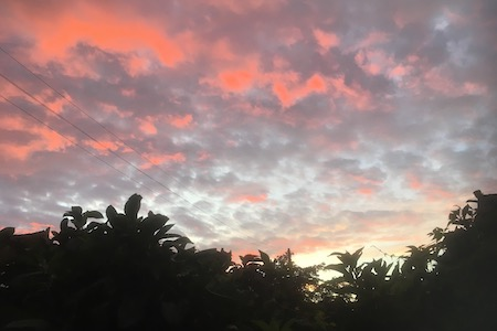 Pink Sunset in Sky